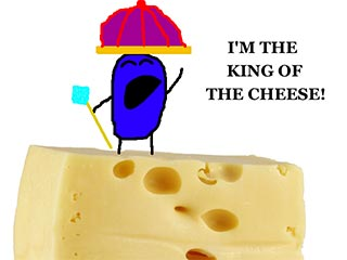 I am the king of cheese!